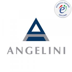Angelini socio netcomm